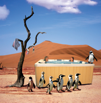 hot tub penguins